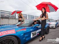 Standa Šedivec Corvette ZR1 Carboniacup